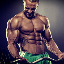 Kategorie Bodybuilding